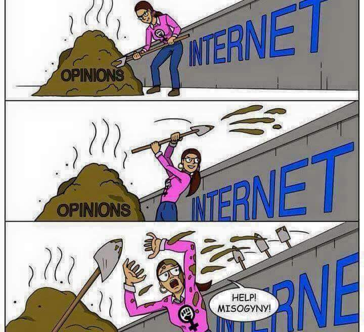 Feminist Opinions